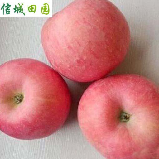 苹果 1公斤