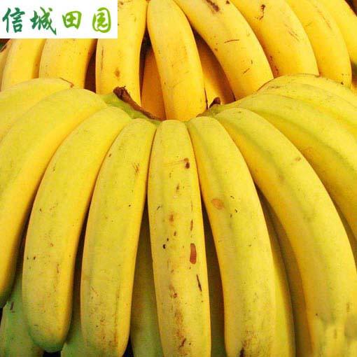 香蕉 1公斤
