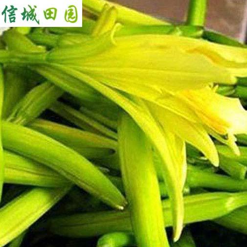 黄花菜 1公斤